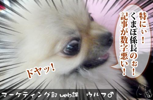 0528_6.jpg