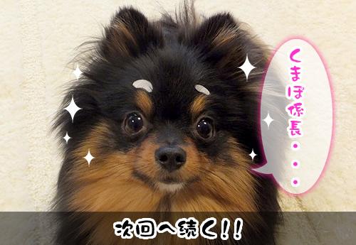 0529_14.jpg