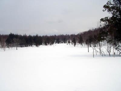 沼の平湿原