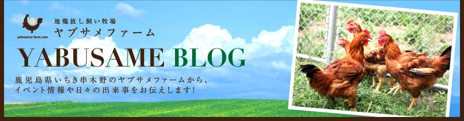 ヤブサメファームブログ