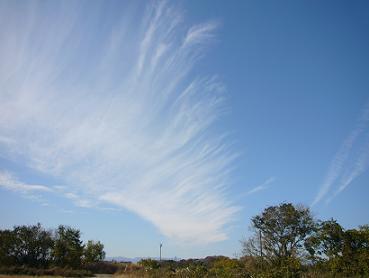 空 空の写真 雲