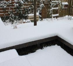 関東の雪 雪の庭 冬の庭