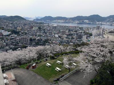 宿からの桜