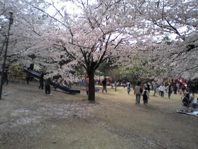 村松公園(2006.4.23 - 01)