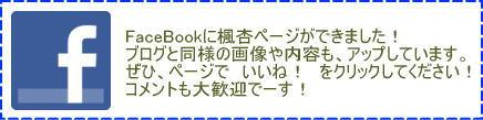 フェイスブックページ、いいね!をよろしく!