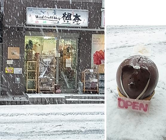 雪の日の楓杏 2013/1/15