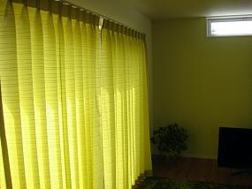 んもぉ・・ 陽射しで黄色に見えますが「黄緑色」なんです。