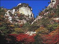 秩父多摩甲斐国立公園