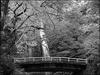 通訳案内士試験: 日本の国定公園(2)
