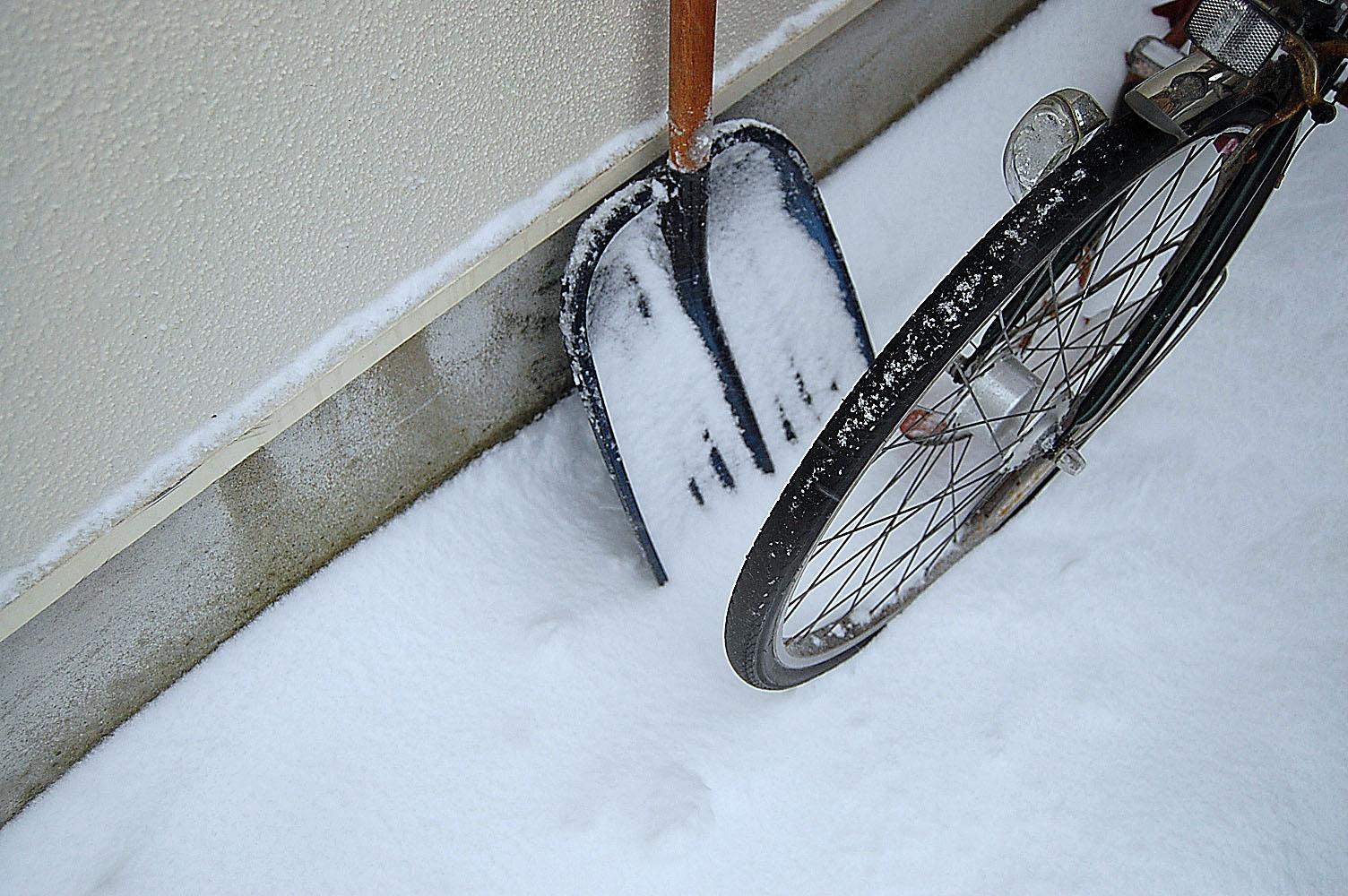 snowy02-mitsuki.jpg