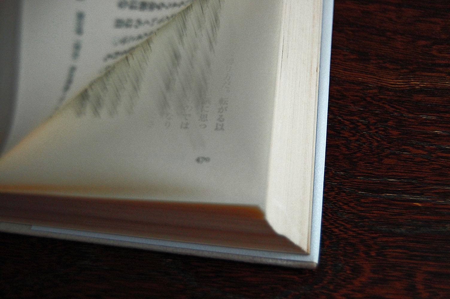 BOOK3-mitsuki.jpg