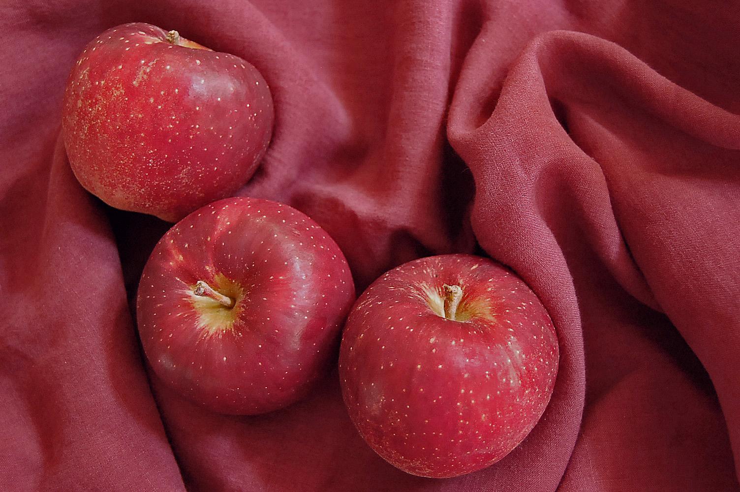 redfruits-mitsuki.jpg