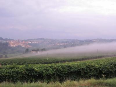 丘陵の下から霧が上昇してくる