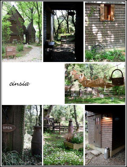 森の中の小さなお店 cinsia