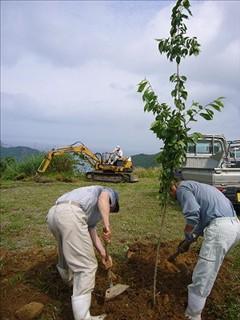 土を寄せるのは力仕事です