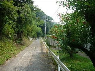 久賀小裏の小道