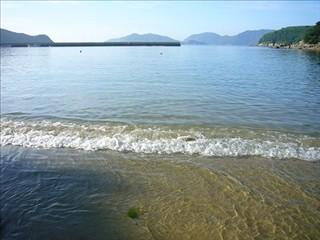 蕨の海水浴場