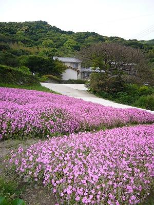 浜脇修道院の近く