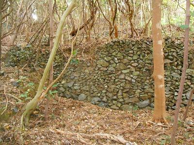 細石流の山の中の畑の石垣
