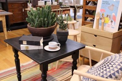 サボテン 植え替え ヴィンテージ家具
