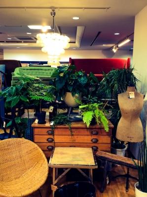 観葉植物 プランタースタンド ラタンチェア