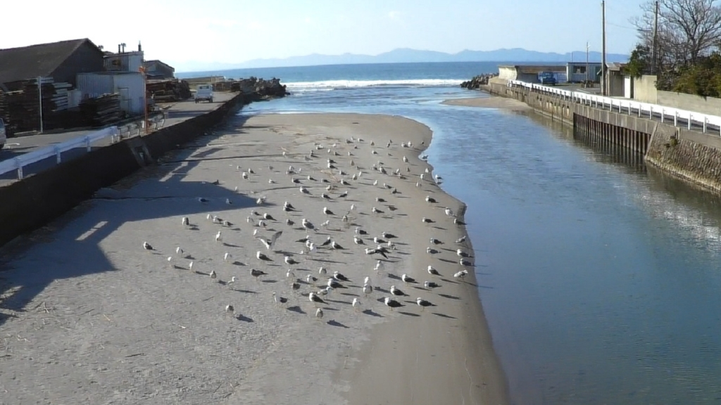 宇田川河口