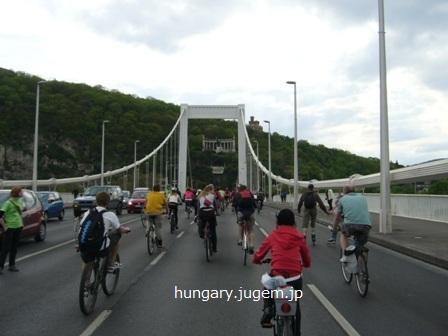 critical mass budapest