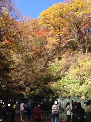 2015.10.18 白糸の滝