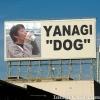 YANAGI DOG