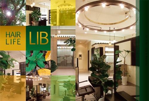 lib-flyer01.jpg