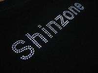 shinzone2