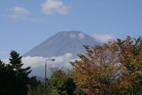 富士サファリパークの駐車場から見た富士山。一部紅葉し始めている木もある