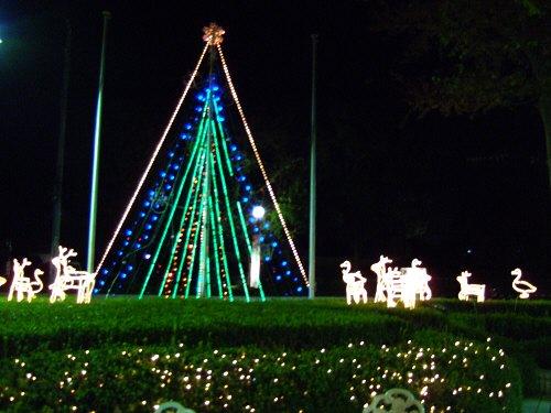 成田空港周辺ホテルホテル日航ウインズ成田玄関前のクリスマスイルミネーション