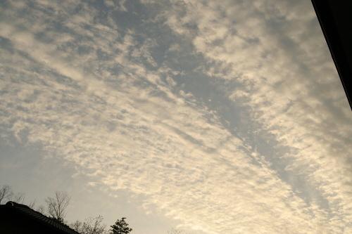 今日の空模様今日の雲