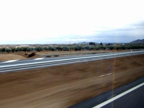 世界遺産トレド(世界自然遺産)Toledoトレドからラマンチャ地方・コンスエグラへ。高速道路の脇はオリーブの木オリーブ畑が広がる。コエンスグラとかコンエスグラではなくコンスエグラ