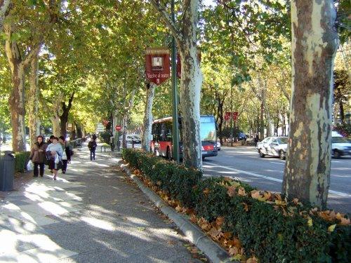 Espana España(エスパーニャ)SPAIN MADRIDマドリッドマドリードプラド美術館周辺プラド通りPaseo del Prado