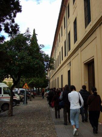 Espana España(エスパーニャ)SPAIN 世界遺産コルドバcordobaコルドバアルカサル通りアルカサルアルカサールAlcazarアンダルシア地方オレンジ並木