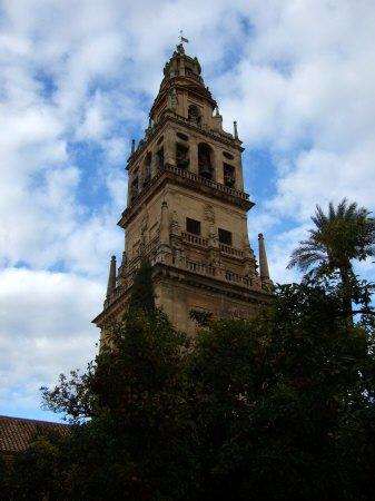 Espana España(エスパーニャ)SPAIN コルドバcordobaコルドバアルカサル通りアルカサルアルカサールAlcazarアンダルシア地方メスキータトリホス通りC.Torijosメスキータオレンジの中庭とミナレット