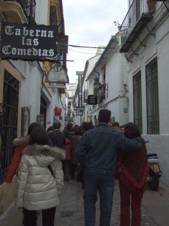 España(エスパーニャ)SPAIN 世界遺産コルドバcordobaコルドバユダヤ人街と花の小径花の小道花の小路
