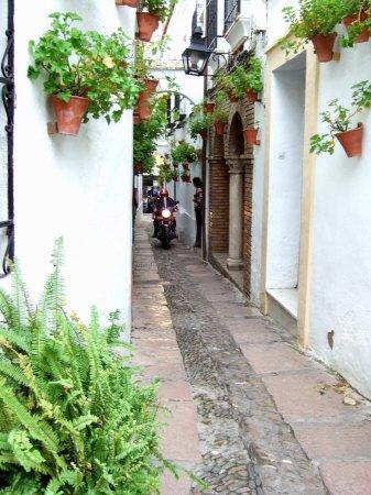 España(エスパーニャ)SPAIN 世界遺産コルドバcordobaコルドバユダヤ人街と花の小径花の小道花の小路La Juderiay Calleja de las Flores