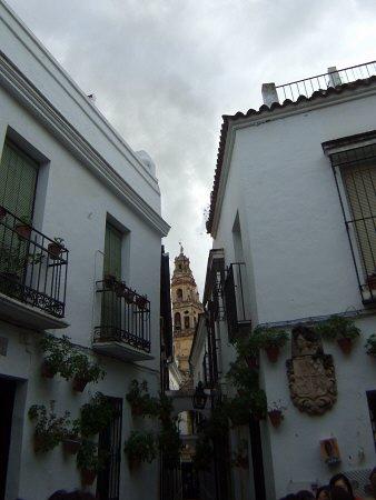 España(エスパーニャ)SPAIN 世界遺産コルドバcordobaコルドバユダヤ人街と花の小径花の小道花の小路La Juderiay Calleja de las Floresちょっとした広場中庭狭い路地を抜けると