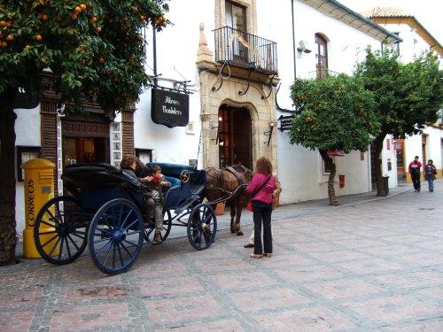 España(エスパーニャ)SPAIN コルドバcordobaコルドバメスキータトリホス通りC.Torijos観光馬車スペインコルドバの風景