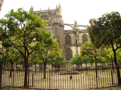 España(エスパーニャ)SPAINフラメンコの本場セビリヤへSEVILLAセビリアセビージャセビーリャ世界遺産世界文化遺産世界3大大聖堂の一つセビリア・カテドラルセビリア大聖堂Alemanesオレンジの中庭Patio de Naranjasオレンジのパティオ
