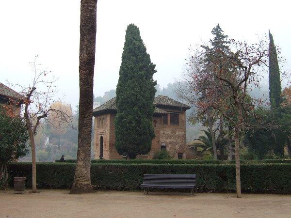 エスパーニャSPAINアンダルシア地方グラナダGRANADA世界遺産世界文化遺産アルハンブラ宮殿Palacio de la Alhambra王宮日本の柿の木
