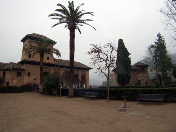 エスパーニャSPAINアンダルシア地方グラナダGRANADA世界遺産世界文化遺産アルハンブラ宮殿Palacio de la Alhambra王宮日本から贈られた柿の木