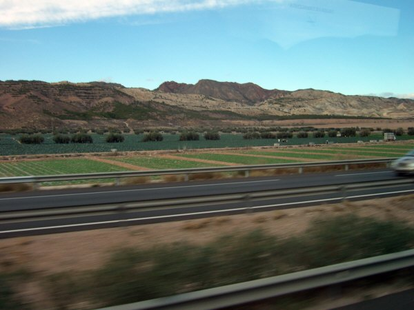 エスパーニャSPAINアンダルシア地方グラナダからバレンシア地方バレンシア高速道路A92号線沿いに見えた風景景色サービスエリアSAで見かけた風景景色野菜畑
