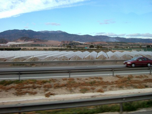 エスパーニャSPAINアンダルシア地方グラナダからバレンシア地方バレンシア高速道路A92号線沿いに見えた風景景色サービスエリアSAで見かけた風景景色野菜畑ビニールハウス
