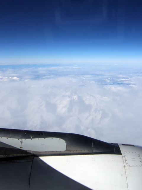 SPANAIR EC-IMB エアバスAIRBUS A320-200フランスアルプスの山々