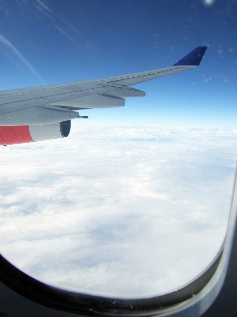 SASスカンジナビアエアラインSK983便エアバスA340 LN-RKG新潟上空を飛行中