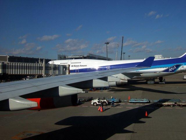 成田国際空港第2旅客ターミナルB74ゲートSASスカンジナビアエアラインSK983便エアバスA340 LN-RKG